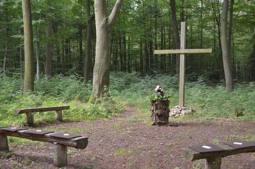 Bestattungen-schwedt-Baumbestattung-4