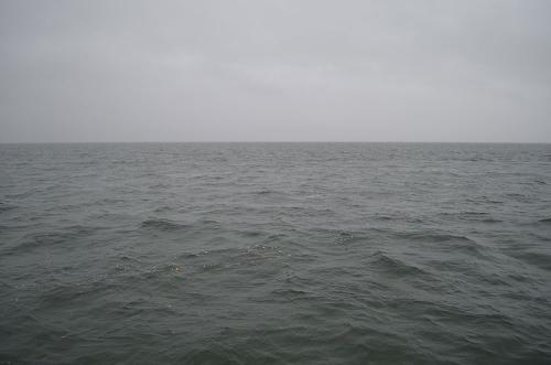 Bestattungen-schwedt-Seebestattung-4